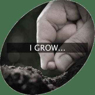 I Grow...
