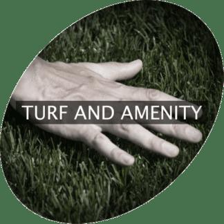 Turf & Annehmlichkeiten
