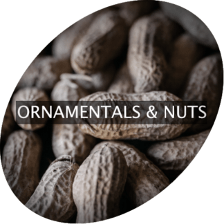 Ornamentals and Nuts