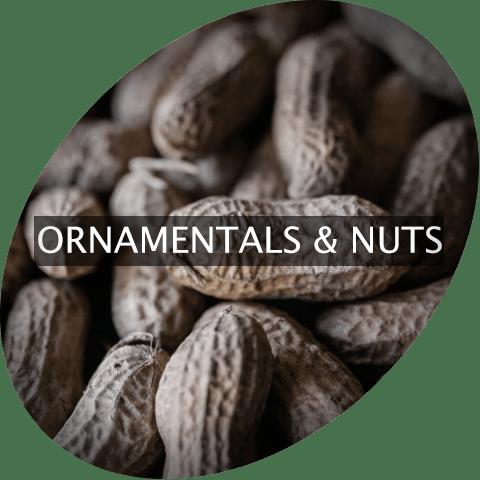 Ornamentals and Nuts