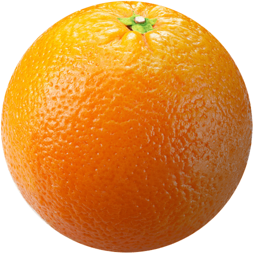 Ripe orange, great horticulture