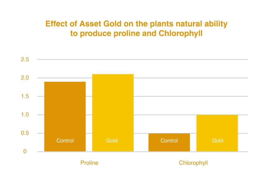 increase-proline-chlorophyll