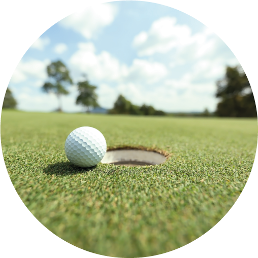 Golf turf category image