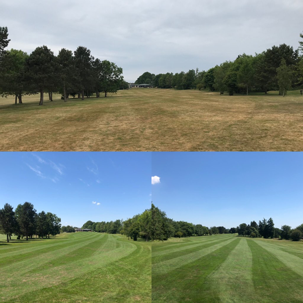 Kingsdown Golf Club before and after results