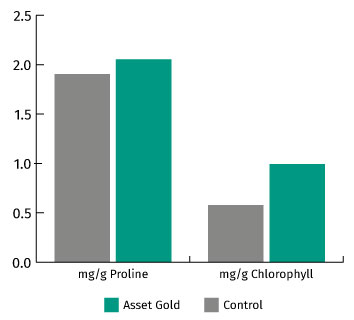 The effect of Asset Gold on Proline and Chlorophyll graph
